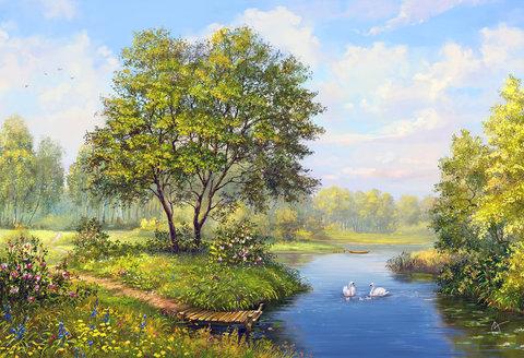 Картина раскраска по номерам 30x40 Летний вид