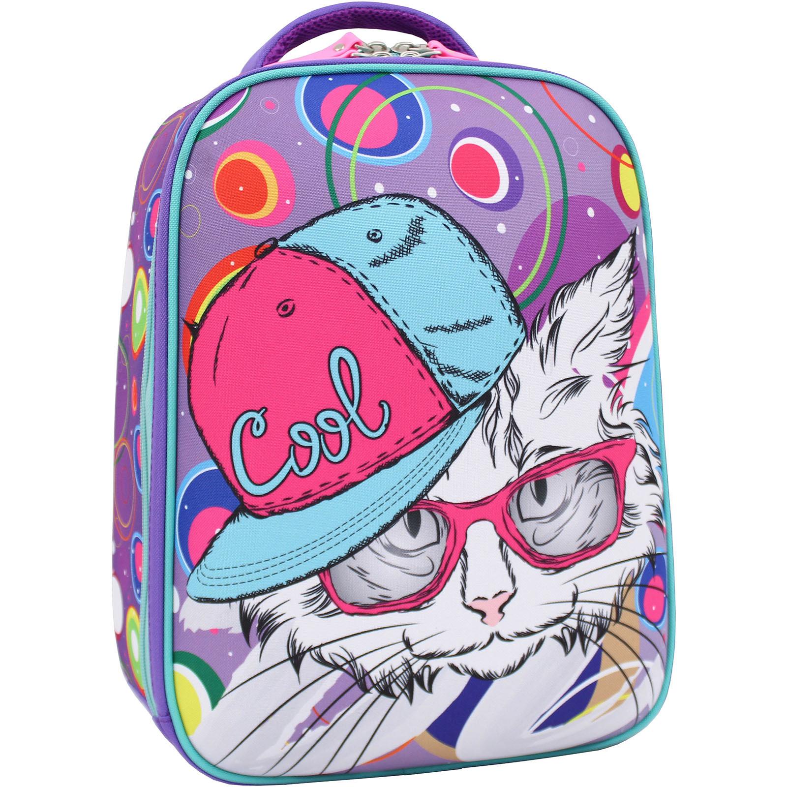 Школьные рюкзаки Рюкзак Bagland Turtle 17 л. фиолетовый 501 (0013466) IMG_1786_суб.501_.JPG