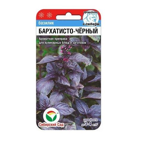 Базилик Бархатисто-черный 0,5гр (Сиб Сад)
