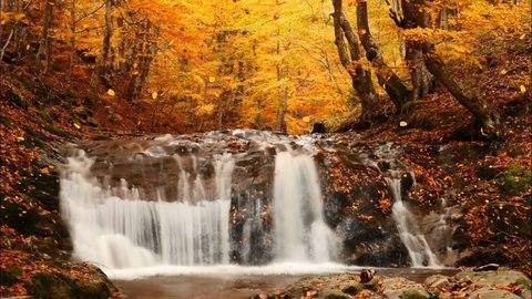 Алмазная Мозаика 40x50 Водопад в осенней листве (арт. S688 )