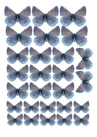 Печать на сахарной бумаге, Набор Бабочки 8