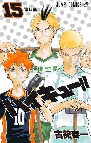 Haikyuu!! vol.15 (Japan Edition)