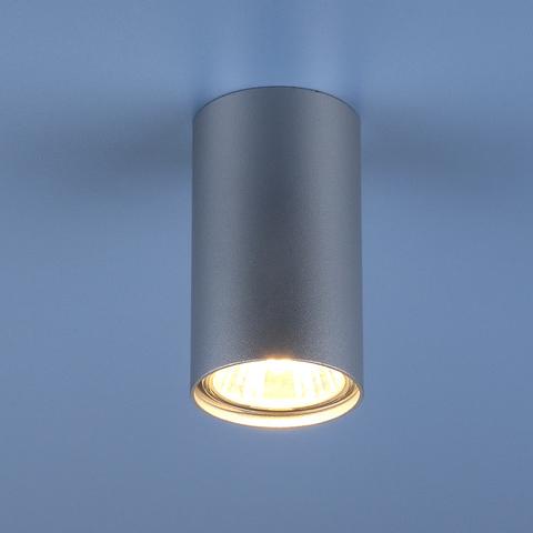 Накладной потолочный светильник 1081 (5257) GU10 SL серебряный