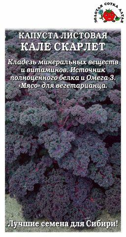 Семена Капуста Кале Скарлет