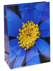 Пакет подарочный с глянцевой ламинацией 18x23x8 см (M) Синий цветок.
