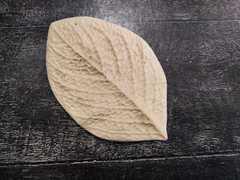 Молд лист универсальный. Размер 100х60мм. Арт ЛУ69.
