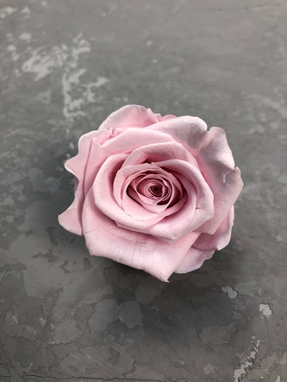 Роза классическая розовая d=5,5 см