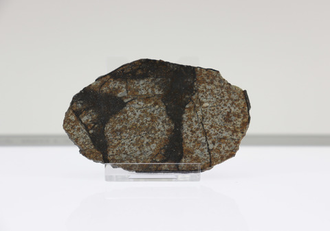Пластина из каменного метеорита Виньялес (Viñales).