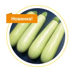 Кабачок СВ 8575 ЯЛ F1 семена кабачка (Seminis / Семинис) Кабачок_СВ_8575.png