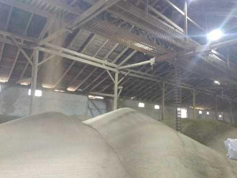 Зерно амаранта  оптом  5 кг