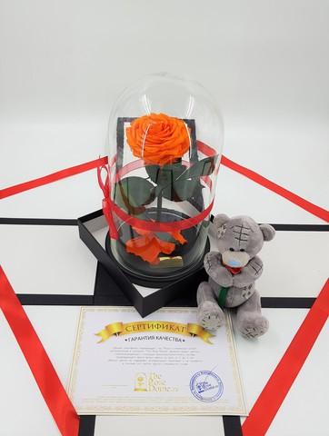 Комплект подарочный Premium Оптом (Выс*Диам*Бутон 27*15*7-8см)Цвет оранжевый