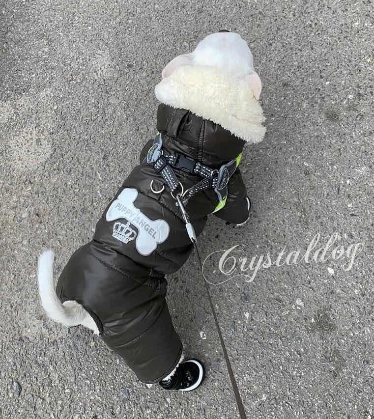 100C - Шлейки для собак