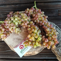 Виноград КишМиш (Армения) / 1 кг / РАСПРОДАЖА