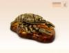 зодиак Рак янтарь (22 июня - 22 июля)