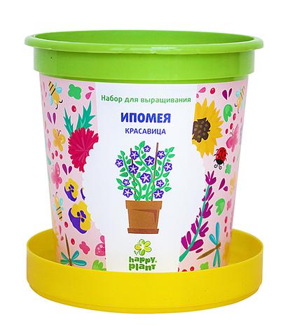 Набор для выращивания в горшочках Happy Plant Ипомея красавица