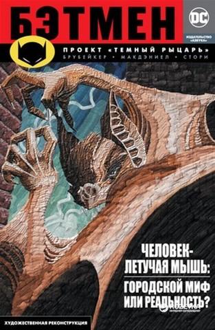 Графические романы/Брубейкер Э./Бэтмен. Проект