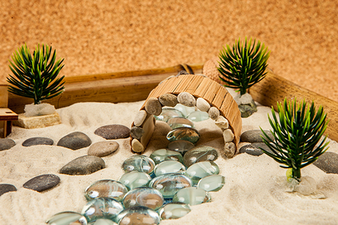 Кустик на камне