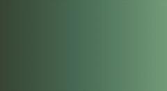 Краска акварельная ShinHanArt PWC 592 (В), Зеленая земля