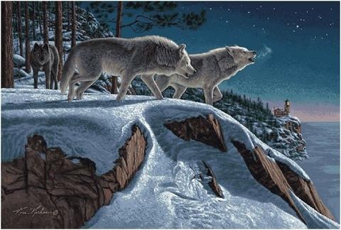 Алмазная Мозаика 40x50 Волки на заснеженной горе  (арт. HWA2320 )