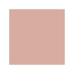 Компактные румяна VITEX Dreamy Blush, тон 102 Golden Peach