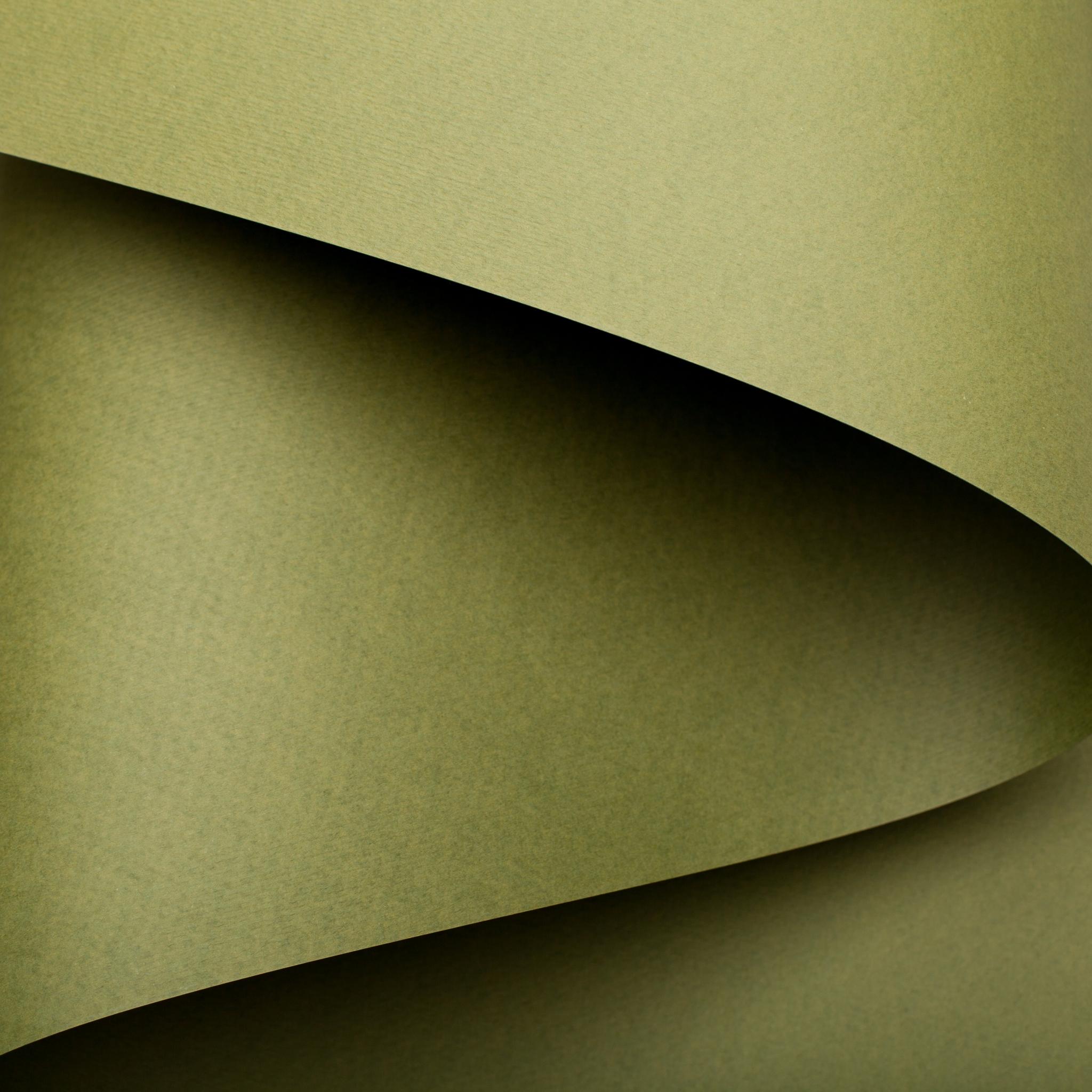 Кардсток MURILLO оливковый