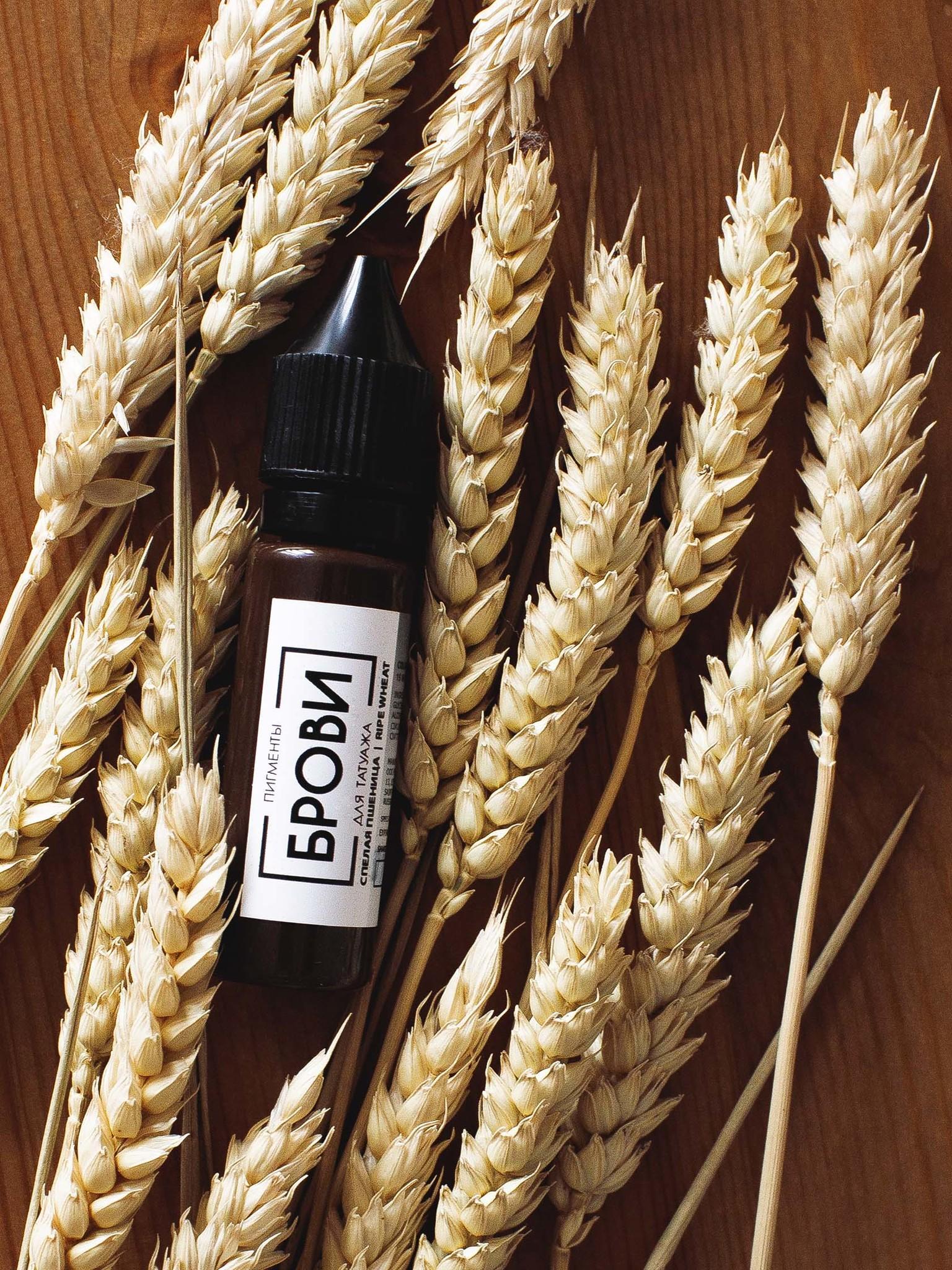 Пигмент для татуажа бровей Спелая пшеница от Брови PMU