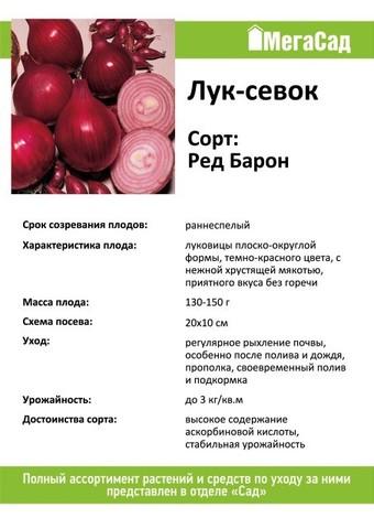 Лук севок сорт Ред Барон 450гр