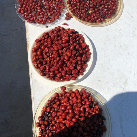 Боярышник, ягода сушёная
