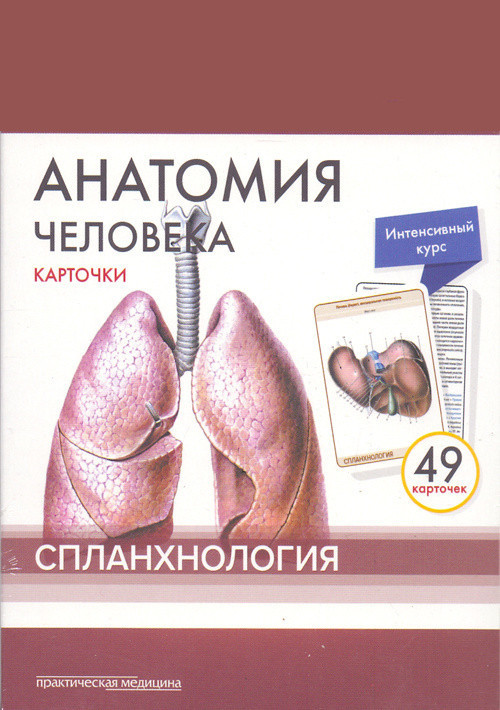 Книги анатомия Сапин Анатомия человека. Спланхнология. Карточки (49 шт.) splanxnologia.jpg