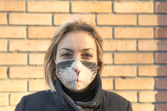 Маска тканевая Gekoko «Серьезный кот» 1