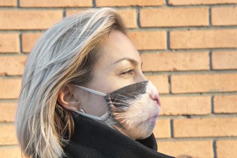 Маска тканевая Gekoko «Серьезный кот» 4