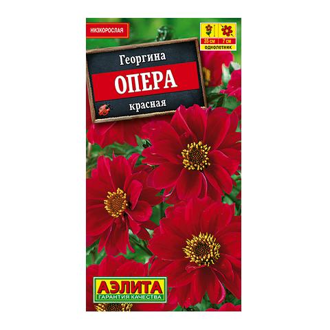 Георгина Опера красная (Аэлита)