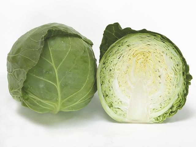 Белокочанная Ортус F1 семена капусты белокочанной (Takii / Таки) Ортус_F1.jpeg