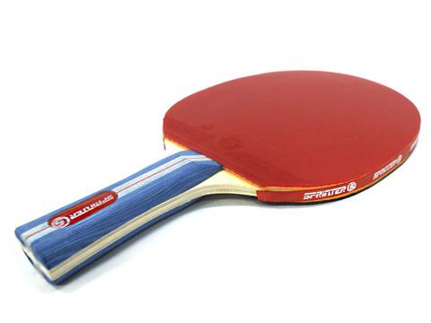 Ракетка для игры в настольный теннис Sprinter, для тренировки и подготовки юных спортсменов. Скорость: 6 Вращение: 5 Контроль: 6 :(S-075):