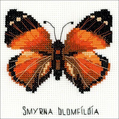 Бабочка Нимфалида