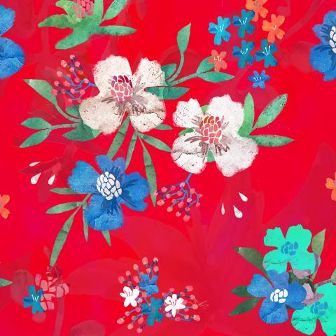 полевые цветы красный
