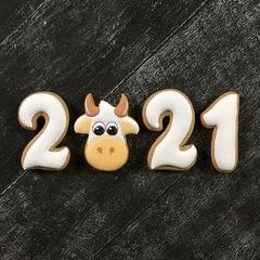 2021 №3 Год быка