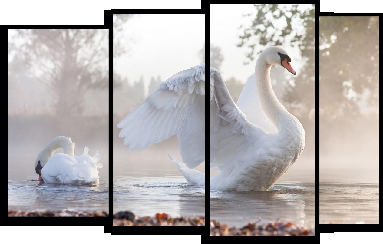 "Природа Модульная картина ""Белые лебеди"" М777.png"
