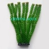 Растение Атман H-006B, 30см