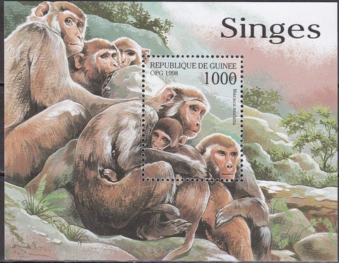 Гвинея 1998 блок 542 **MNH