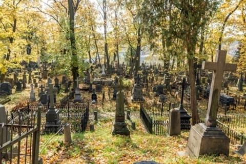 ПМООС и СЗЗ для кладбища