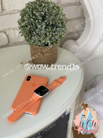 Чехол iPhone XS Max Silicone Case /papaya/ папая original quality