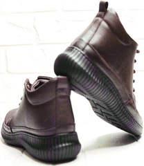 Осенние ботинки женские кеды Evromoda 535-2010 S.A. Dark Brown.