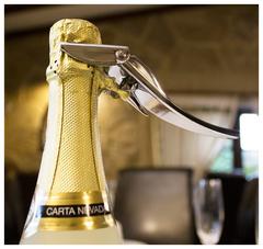 Открывалка для игристых вин Brut Koala, хром, фото 8