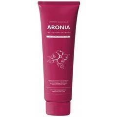 Pedison Шампунь для окрашенных волос арония INSTITUTE-BEAUT ARONIA COLOR PROTECTION SHAMPOO 100 мл