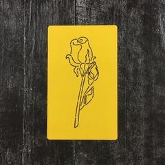 Роза №12