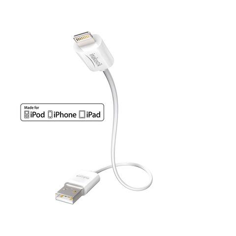Inakustik Premium iPlug Cable Apple Lightning > USB A, 3 m, 00440203