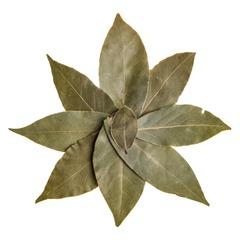 Лавровый лист сушеный 100 гр.