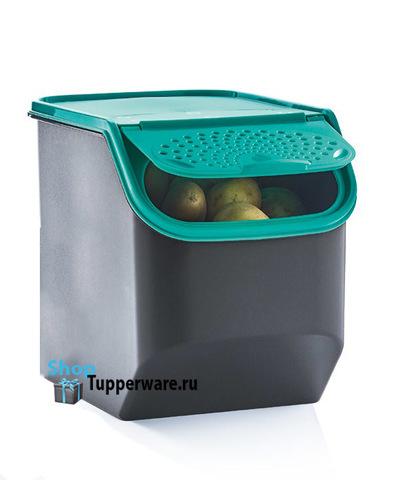 контейнер свежесть 5,5л в темно-зеленом цвете
