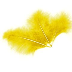 Перья Желтые, 10-15 см, 30 шт.